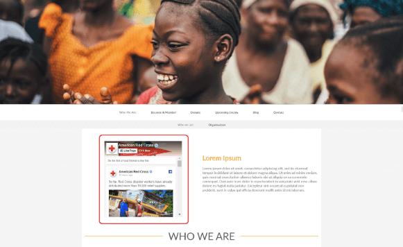 facebook-for-nonprofits-widget